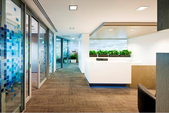 541 Hay Street Office Fit-out